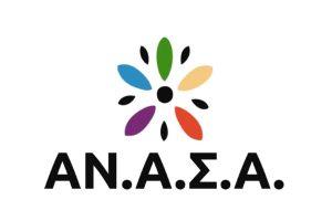 Anasa front