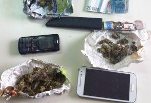 Palaiopanagia narkwtika