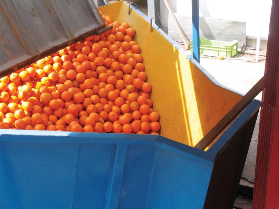 xymopoiisi portokaliou