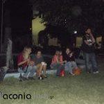 Festival Neolaias SYRIZA (15)