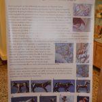 pezodromisi Sparti (11)
