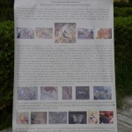 pezodromisi Sparti (9)