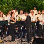 Filarmoniki Spartis Sainopouleio 2015 (21)