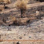 enoria Tseramiou stis pyropliktes perioxes (12)
