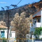 enoria Tseramiou stis pyropliktes perioxes (7)