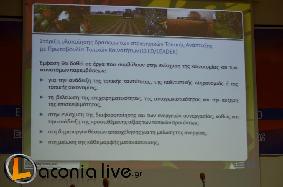parousiasi CLLD (1)